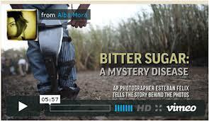 (Video) En Centroamérica los cañeros siguen muriendo