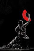 Alma de Carmín Compañía de Danza Flamenca