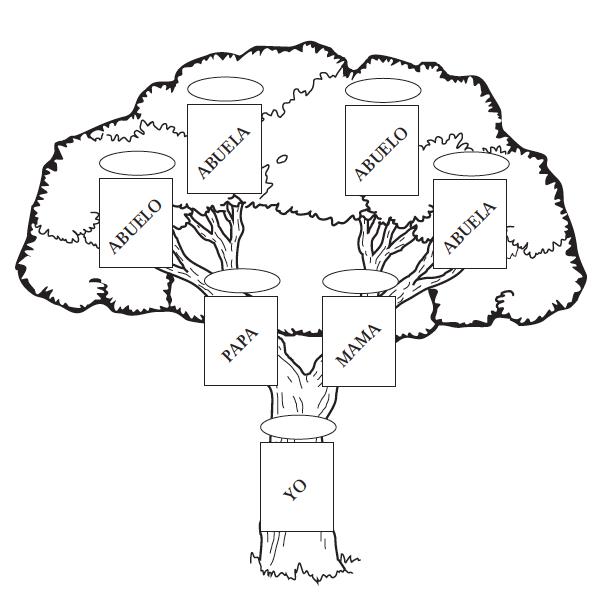 Arbol genealogico familiar dibujo  Imagui