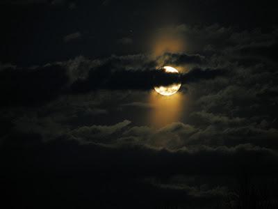 POEMAS SIDERALES ( Sol, Luna, Estrellas, Tierra, Naturaleza, Galaxias...) - Página 13 Tgeb61xm24qz4fmpwiw4