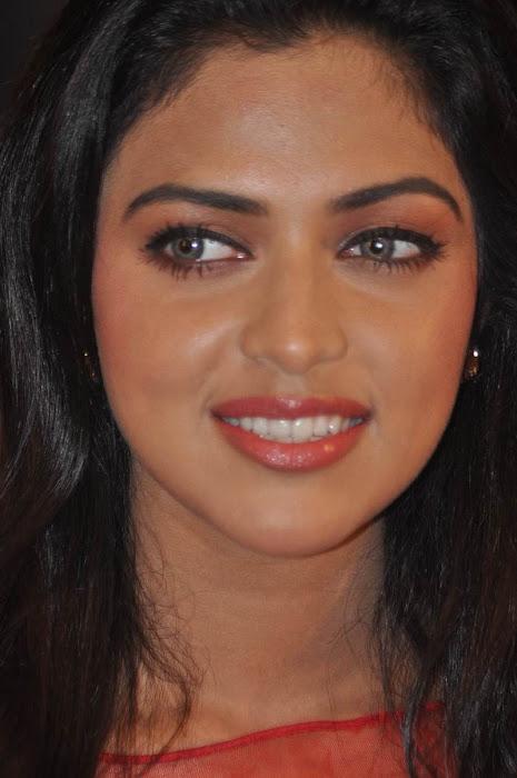 amala paul at naayak audio launch actress pics