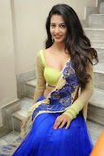 Dhaksha Hot photos at Ak Rao Pk Rao Audio launch-thumbnail-19