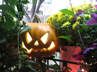 Halloween Season on my Patio