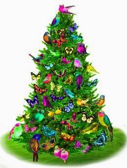 Albero Natale Merano
