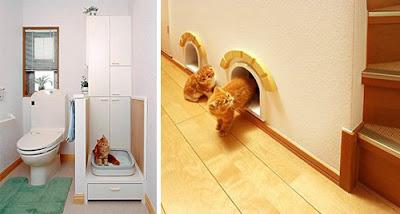 Ed ecco allora una casa per i gatti.