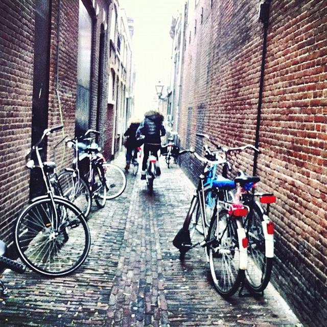 15 fotos linda de bicicletas tiradas com Instagram