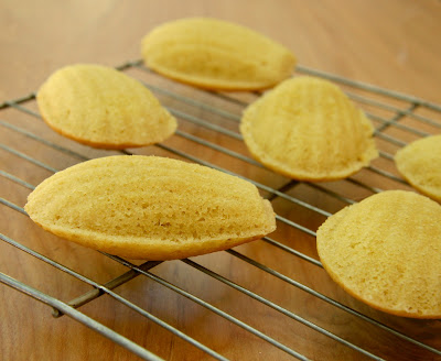 traditional madeleines