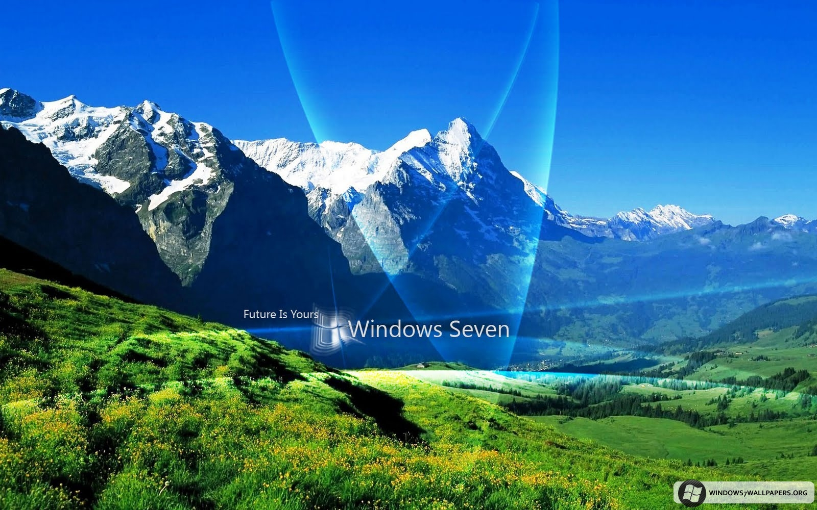 Glass Cup Nature Widescreen, Wallpaper, Nature, Widescreen, Nature Wallpaper Hd Widescreen