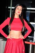 Sonal Chauhan Sizzling at Size Zero Premier-thumbnail-13