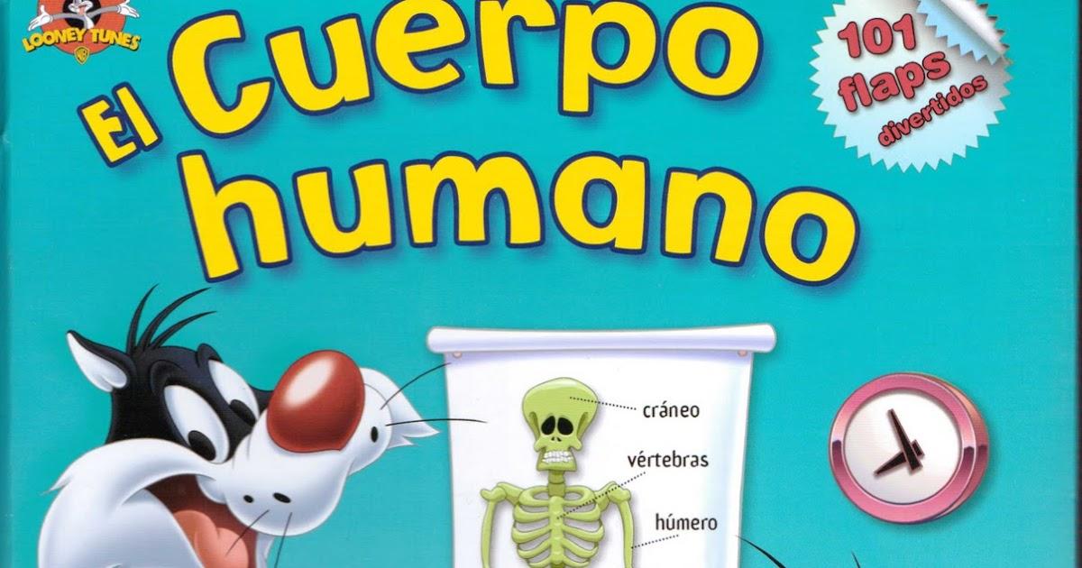 Maestras de Educación Inicial: Trabajando el Cuerpo Humano