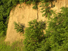 Loess in Vicksburg, Mississippi, USA