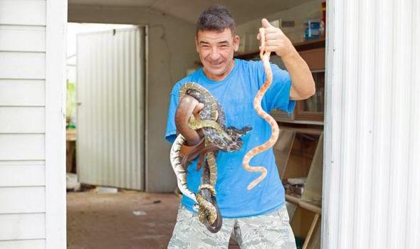 Γνωρίστε τον άνθρωπο που φιλοξενεί δεκάδες δηλητηριώδη φίδια