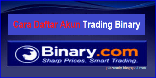 Binary consulting limited