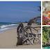 Informasi : 12 Tempat Wisata PULAU TALIABU yang Wajib Dikunjungi - Provinsi Maluku Utara, GLOBAL