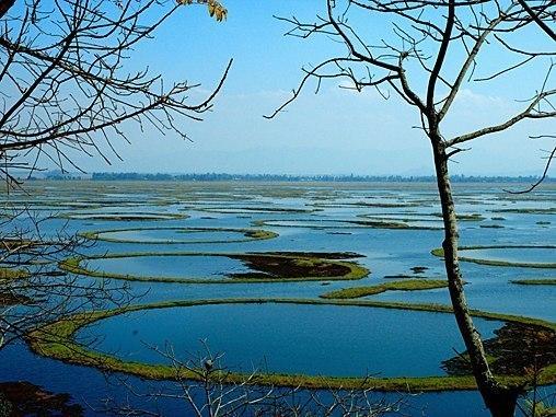India Punya Pulau  Yang Bergerak Sendiri