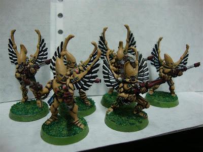 Halcones Cazadores