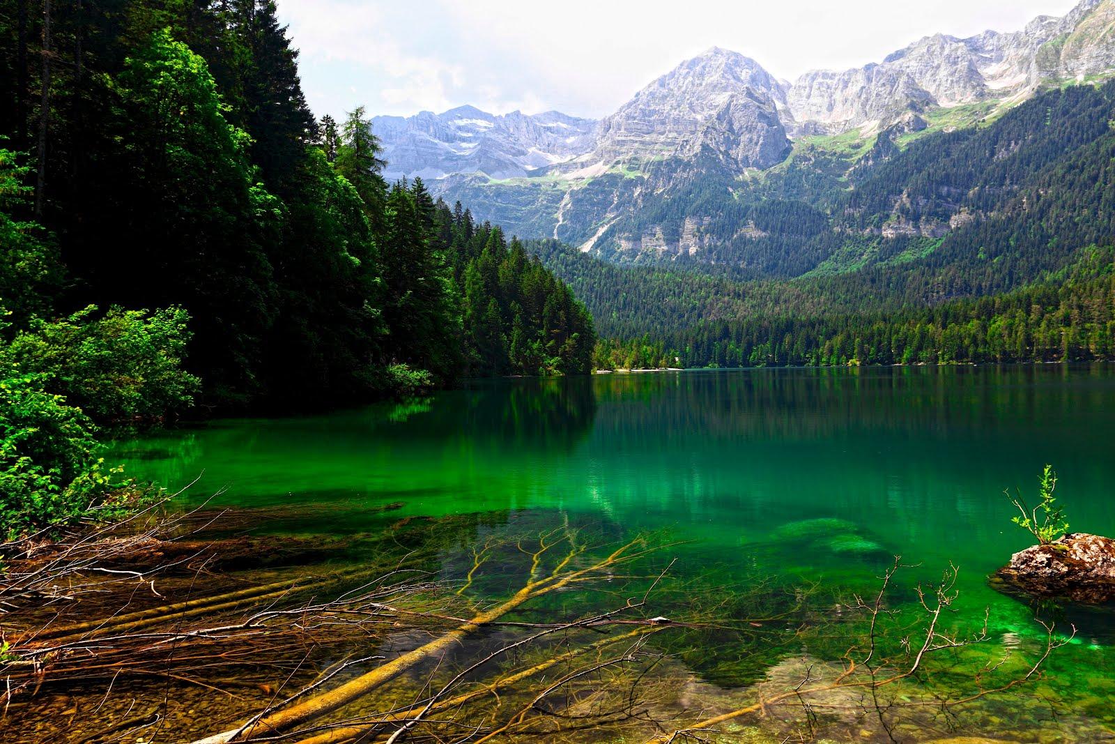 Banco de im genes para ver disfrutar y compartir lago - Un lugar para meditar ...