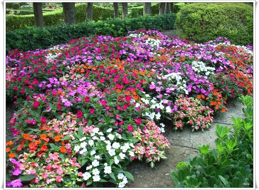 Jardines de monforte valencia for Jardines de monforte valencia