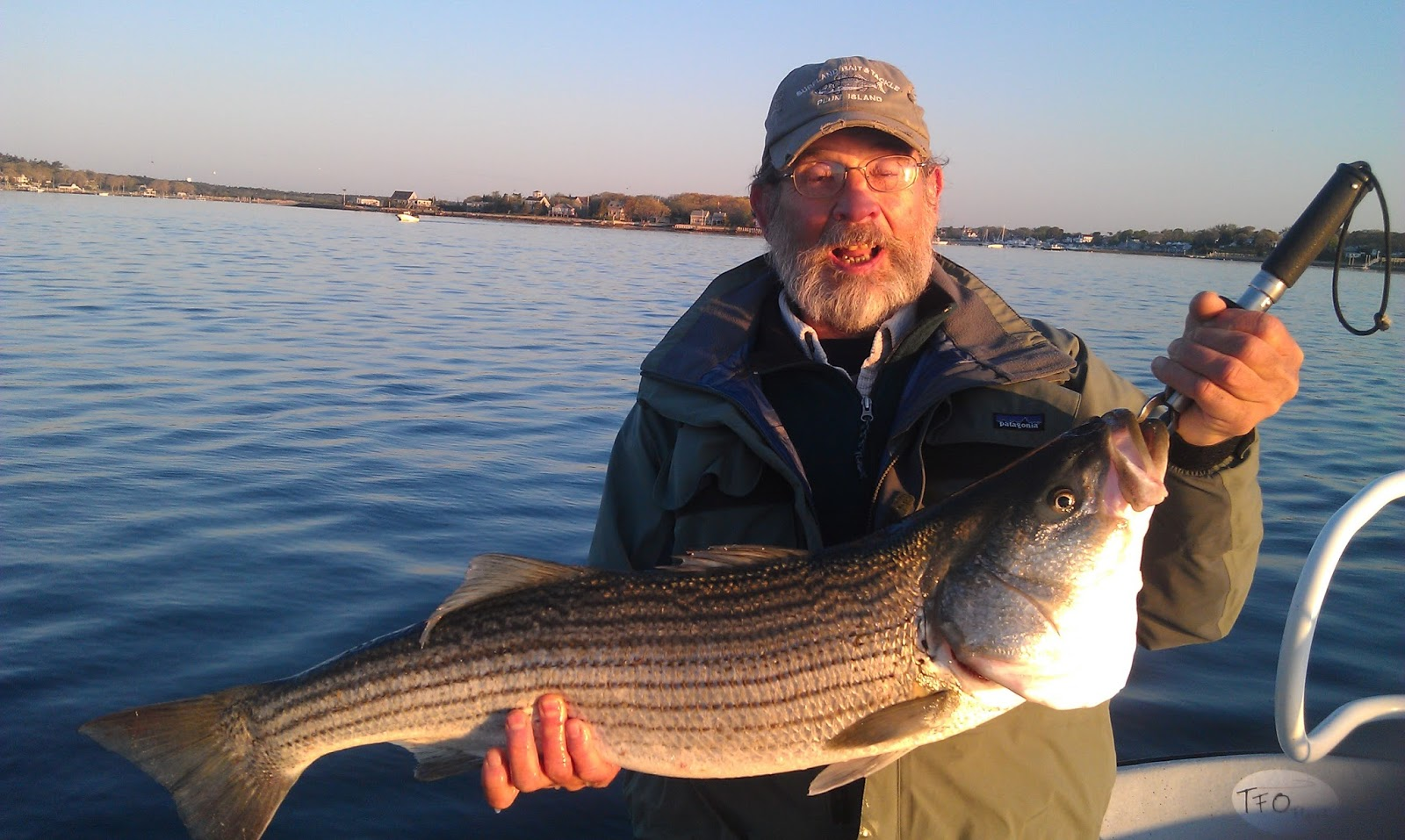 Maine striped bass fishing july 2013 for Maine bass fishing