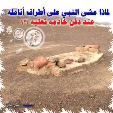 ما سر مشى النبى صلى الله عليه وسلم على انامله عند دفن ثعلبه خادمه