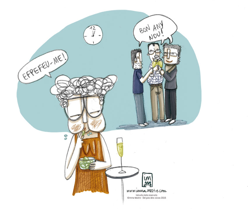 Feliç 2016. Nova vinyeta per Del País dels Coixos ©Imma Mestre Cunillera