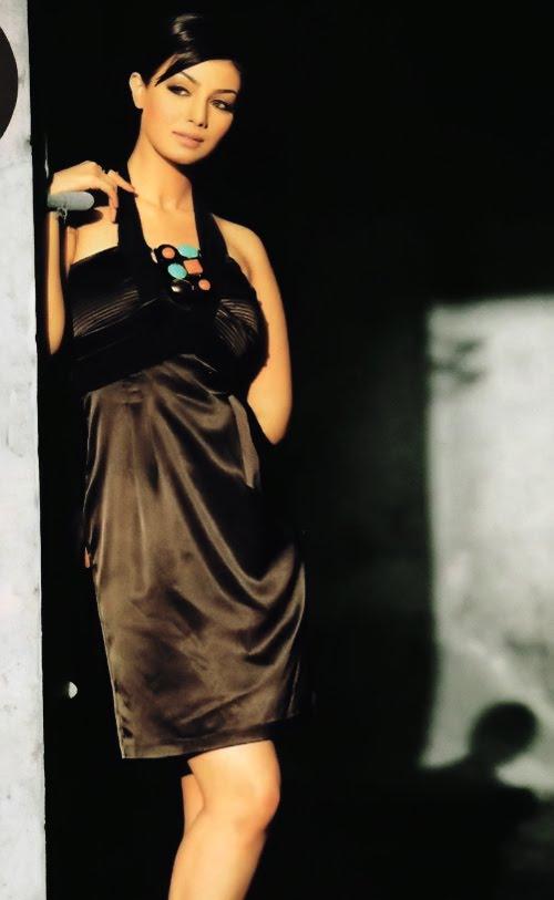 Bollywood Celebrity Ayesha Takia Biography and Latest Hot ...