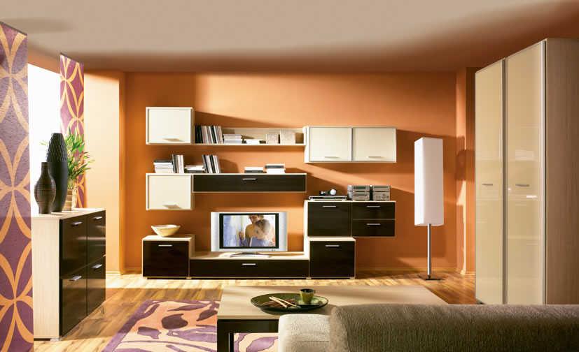 Living Room Modren Minimalist Color Home Design
