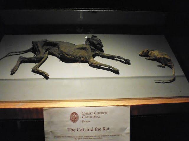 The cat and the rat en la cripta de la catedral de Dublín