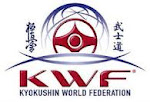 Kyokushin World Federation