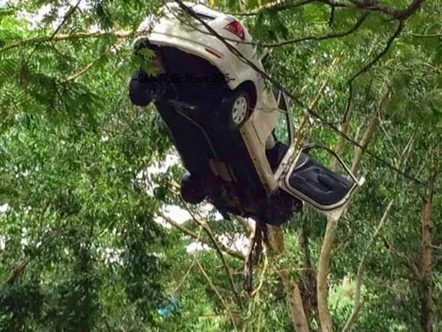 Cerita Sebenar Gambar Proton Saga BLM sangkut atas pokok di jalan Persiaran Senawang 4 Gambar Terjawap
