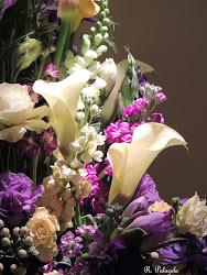 Boston Flower Show 2013