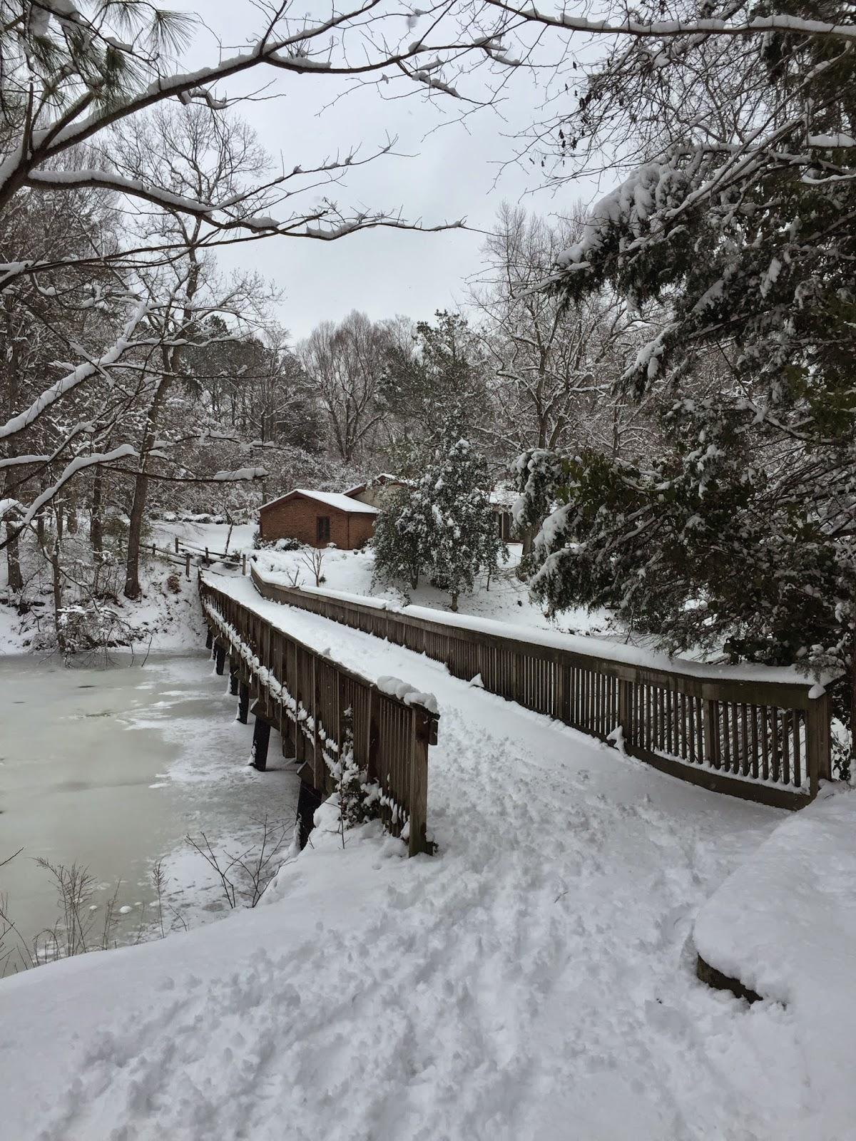 wareham's pond, snow, frozen, bridge, kingsmill, virginia, winters cape