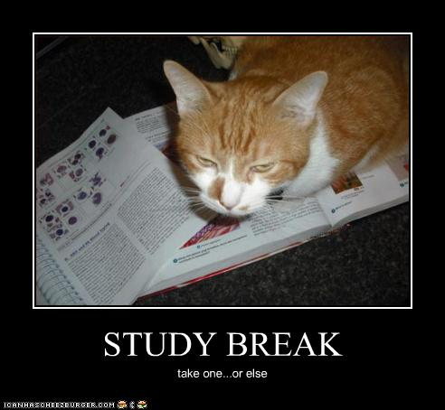 with us and provide food filled study breaks cough upc for easy access to nutrition which ill try to keep track of good luck with your studies