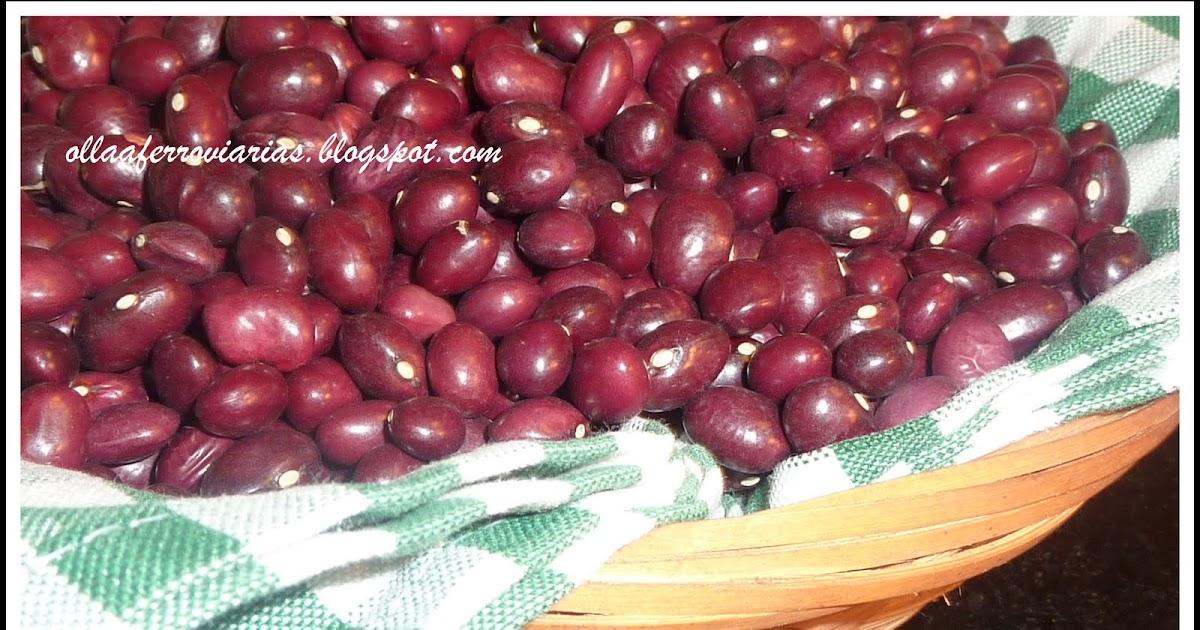 Ollasferroviarias caricos alubias rojas - Alubias rojas con costilla ...