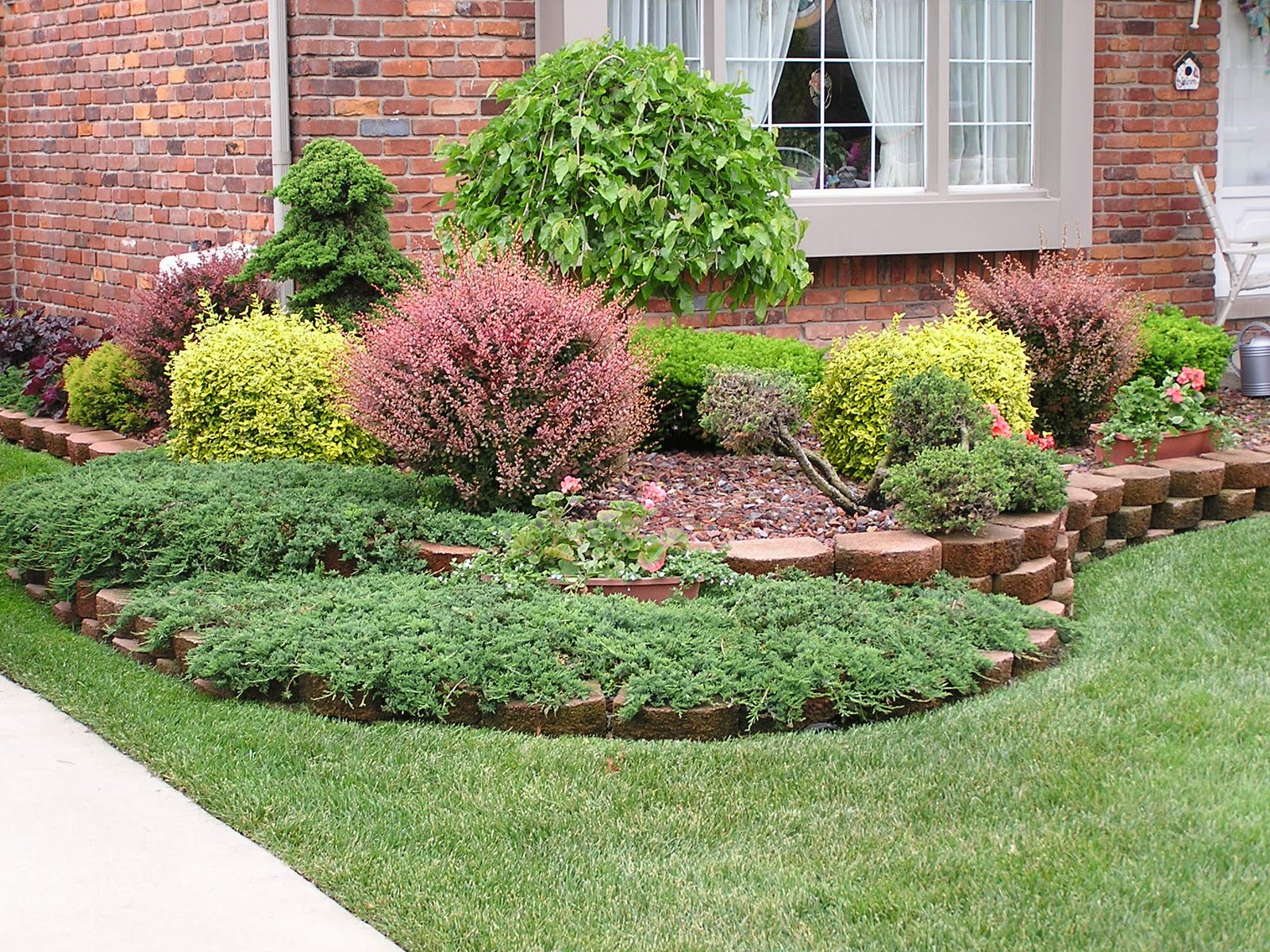 D i y d e s i g n curb appeal part 2 the landscaping for Low bushes for landscaping