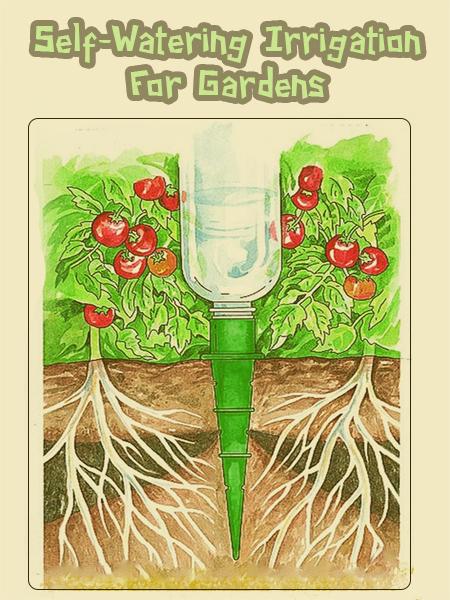 Um bom exemplo para irrigar pequenos cultivos - Farming & Agriculture: Self-Watering Irrigation For Gardens