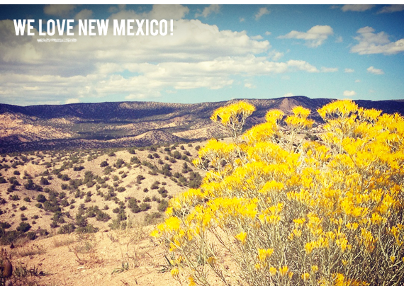 We love New Mexico!