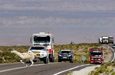 Mobil dan Truk, Reli Dakar 2013