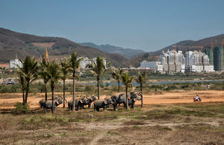 China, stenen olifanten in Xishuangbanna