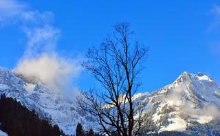 Gunung salju abadi