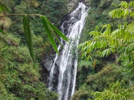 Curug Muara Jaya : Tempat wisata di majalengka yang asri dan segar