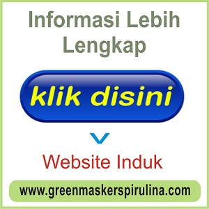 WEBSITE INDUK
