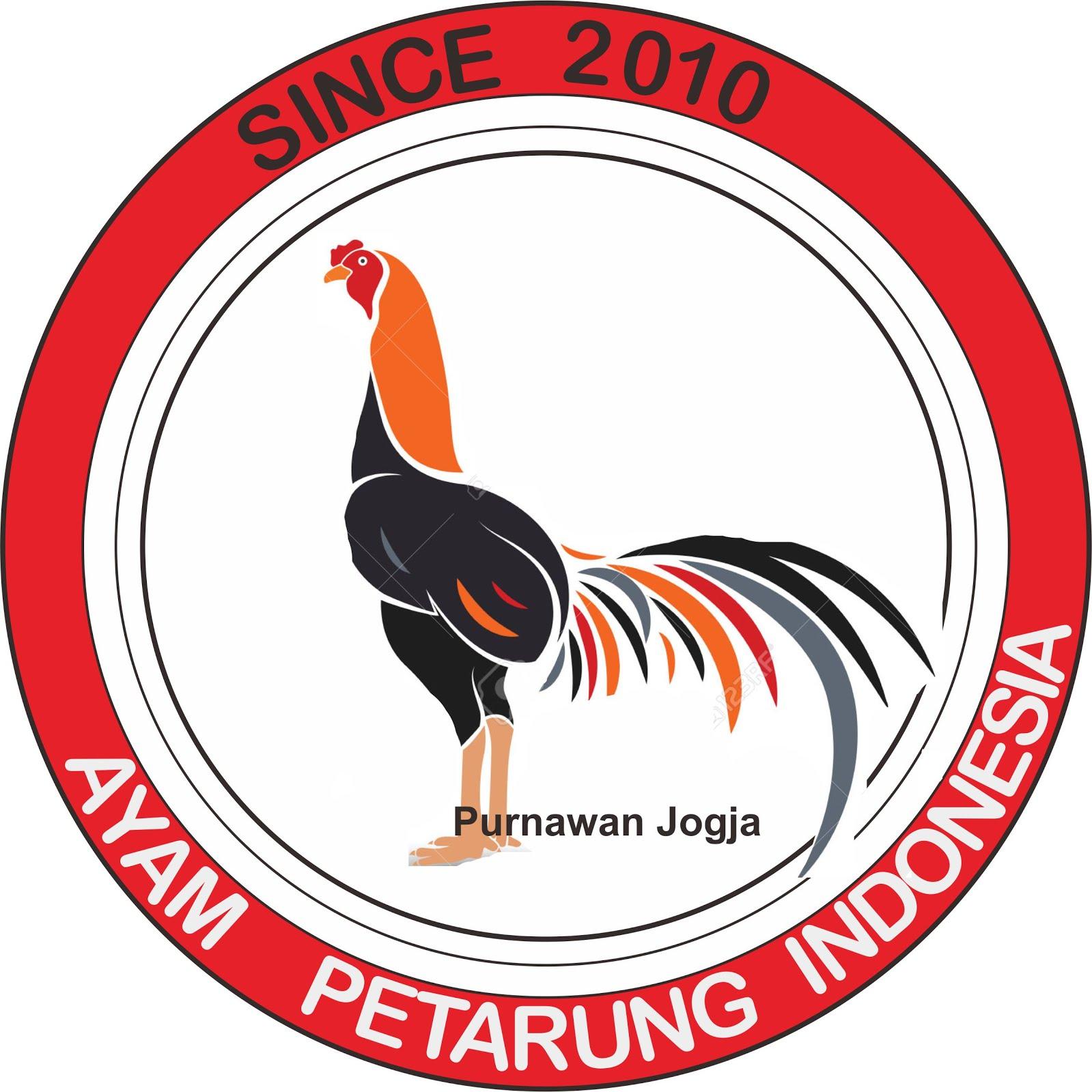 Ayam Petarung Jogjakarta Berat Bervidio Hasilnya Nama Trah Songgo Bumi