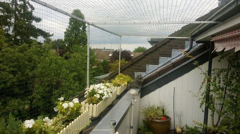 katzennetz nrw die adresse f r ein katzennetz katzennetz an dachloggia in t nisvorst bei krefeld. Black Bedroom Furniture Sets. Home Design Ideas