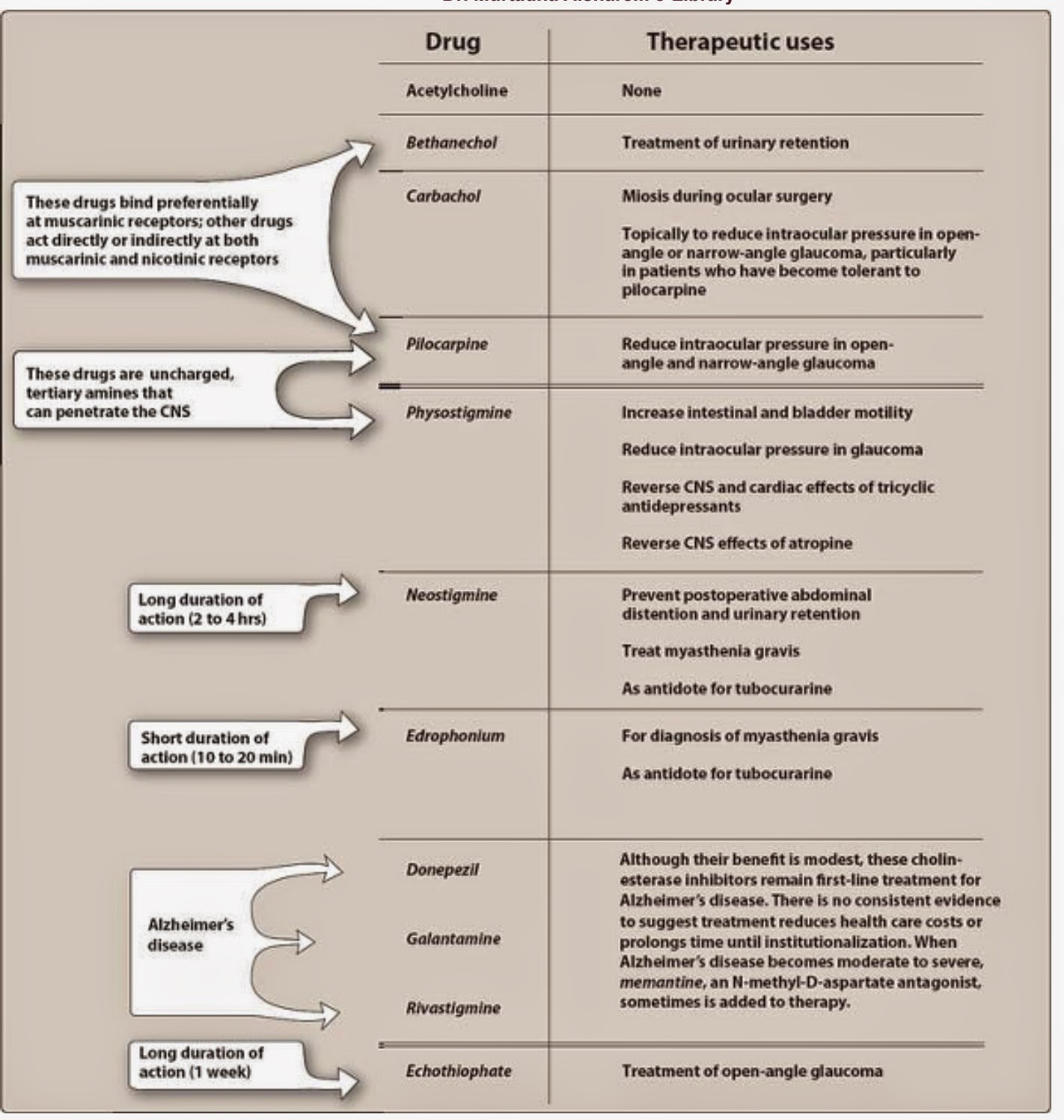 an overview of pharmacology Clozapine, an overview of clinical pharmacology, efficacy and safety scheltema  beduin a a 1, baken b c m 2, van os s 2, de haan l 1 1 department of.