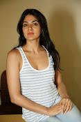Sakshi Chowdary dazzling photo shoot-thumbnail-14