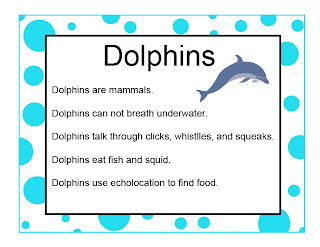 bottlenose dolphin research paper The short-term impact of dolphin-watching on the behaviour of bottlenose dolphins (tursiops this paper presents the research findings bottlenose, dolphin.