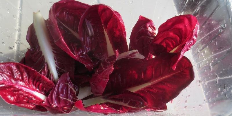Salat palla rossa