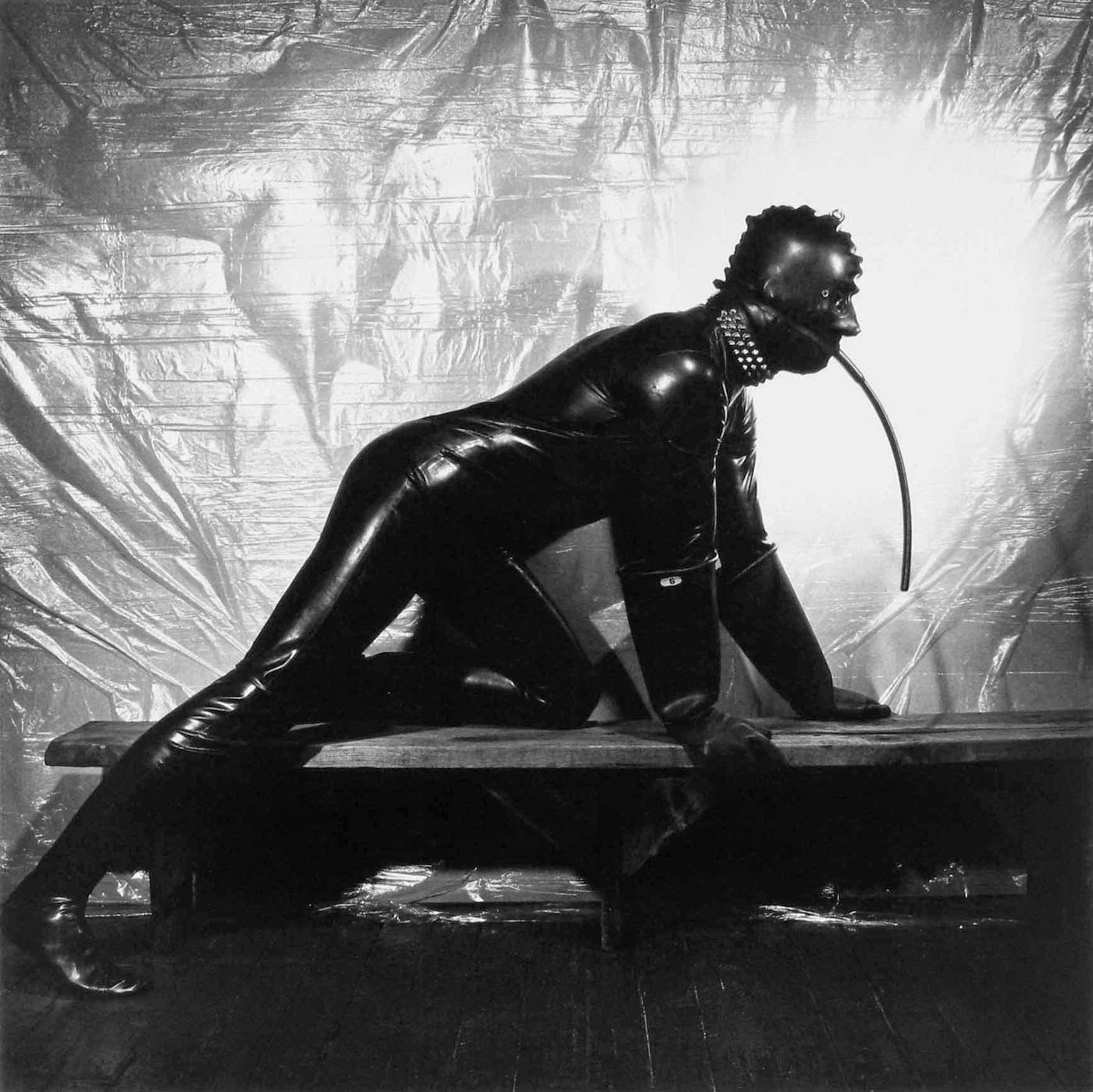 Roberth Mapplethorpe