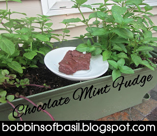 Chocolate Mint Fudge | Bobbins of Basil